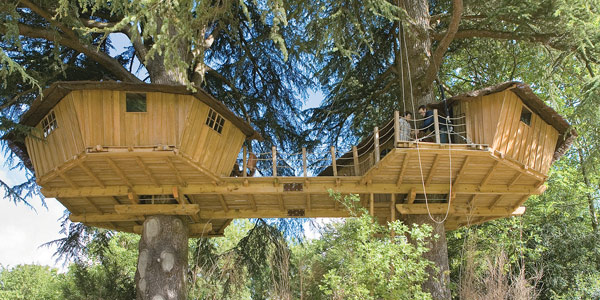 Fancy treehouses for Tree houses plans and designs